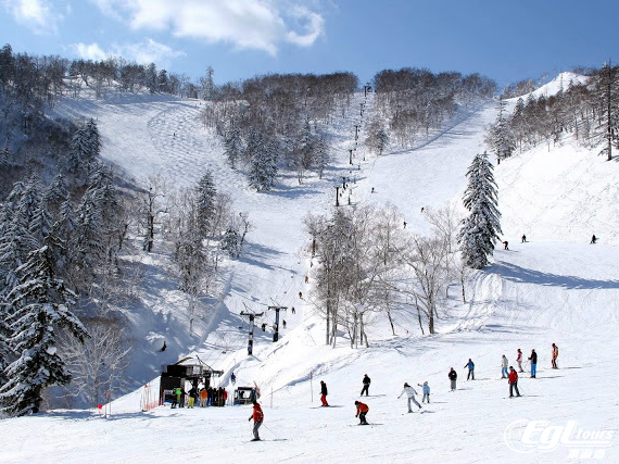 2017日本熱門滑雪推薦-富良野